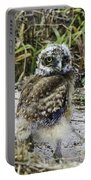 Chick Burrowing Owl  Portable Battery Charger