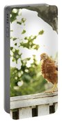 Chicken On Fence Portable Battery Charger