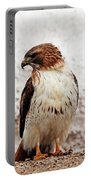Chickenhawk Portable Battery Charger