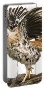 Chickens In Bird In Hand 2 Portable Battery Charger