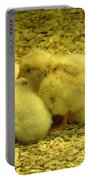 Chicks Portable Battery Charger