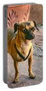 Chihuahua - Dogs Portable Battery Charger