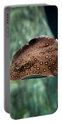 Child Watching Spotted Ray Fish Portable Battery Charger