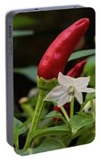 Chilli Flowers Portable Battery Charger