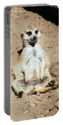 Chilling Meerkat Portable Battery Charger
