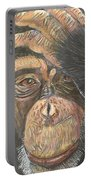Chimp Portable Battery Charger