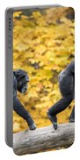 Chimpanzee Pair IIi Portable Battery Charger