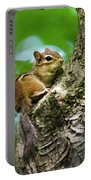 Chipmunk On A Limb Portable Battery Charger