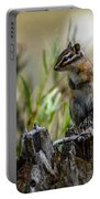 Chipmunk On Its Favorite Stump Portable Battery Charger