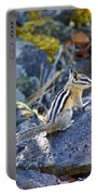 Chipmunk On The Rocks Portable Battery Charger