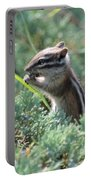 Chipmunk With Bokeh Portable Battery Charger
