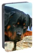 Chiron The Rottweiler  Portable Battery Charger