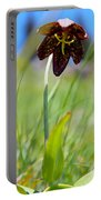 Chocolate Lily Two Portable Battery Charger