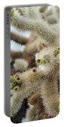 Cholla Cactus Garden Closeup Portable Battery Charger