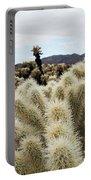 Cholla Cactus Garden Landscape Portable Battery Charger