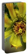 Cholla Flower H1848 Portable Battery Charger