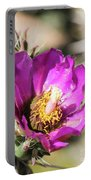 Cholla Flower Portable Battery Charger