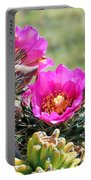 Cholla In Bloom Portable Battery Charger