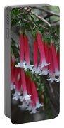 Christmas Bells 1 - Australian Native Fuchsia Portable Battery Charger