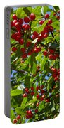 Christmas Berries Portable Battery Charger
