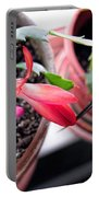 Christmas Cactus Bloom Portable Battery Charger