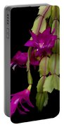 Christmas Cactus Purple Flower Blooms Portable Battery Charger