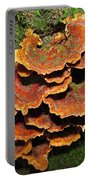 Christmas Turkeytail Portable Battery Charger