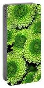Chrysanthemum Green Button Pompon Kermit Portable Battery Charger