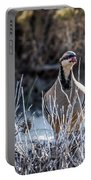 Chukar Portable Battery Charger