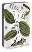 Cinnamon Tree, 1735 Portable Battery Charger
