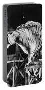 Circus: Tigers Portable Battery Charger