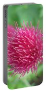 Cirsium Burgandy Thistle Portable Battery Charger