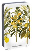 Citron And Orange, 1613 Portable Battery Charger