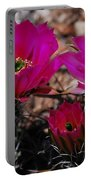 Claret Cups 2 Portable Battery Charger