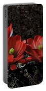 Claret Cups Portable Battery Charger