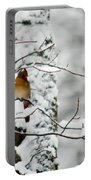 Classic Cardinal In Snow Portable Battery Charger