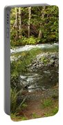 Clear Mountain Stream Portable Battery Charger
