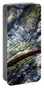 Clear Water Level With Twigs Portable Battery Charger