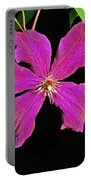 Clematis 2598 Portable Battery Charger