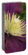 Clematis 4000 Portable Battery Charger
