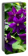 Clematis Flowers Portable Battery Charger by Corey Ford