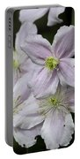 Clematis Montana Rubens Group Portable Battery Charger
