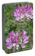 Cleome Sparkler Lavender Portable Battery Charger