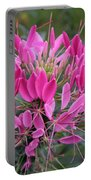 Cleome Spinosa  Portable Battery Charger