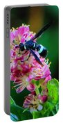 Clethra And Wasp Portable Battery Charger