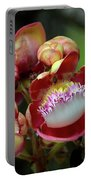 Close-up Macro Of Flower And Fruit Of Cannonball Tree Portable Battery Charger