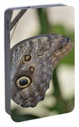 Close Up Of A Pretty Brown Morpho Butterfly  Portable Battery Charger