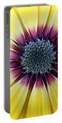 Close-up Of A Yellow African Daisy Portable Battery Charger