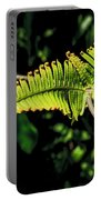 Close Up Of An Uluhe Fern  Portable Battery Charger