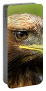 Close-up Of Golden Eagle With Turned Head Portable Battery Charger
